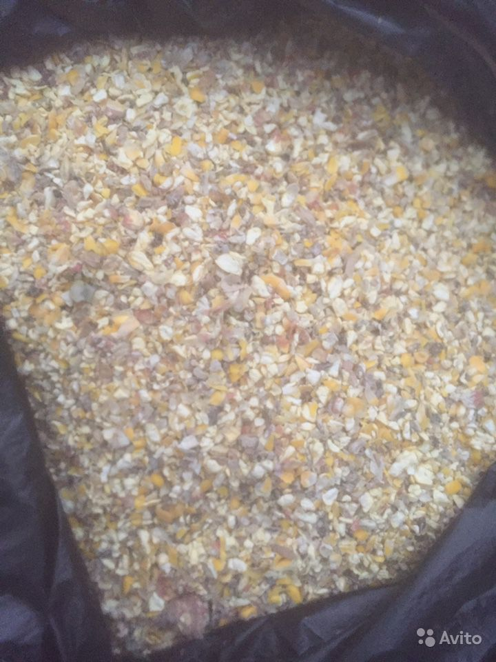 Сечка кукурузная