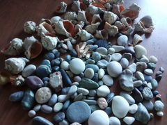 Морские камни и ракушки