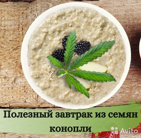 Простой рецепт конопли транспортировка марихуану