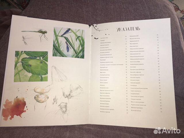 Книга новая Музей живых насекомых
