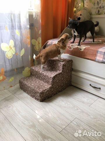 Лесенка для собак 89212512162 купить 3