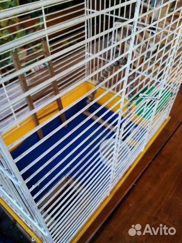 Клетка для попугая  89521120348 купить 2
