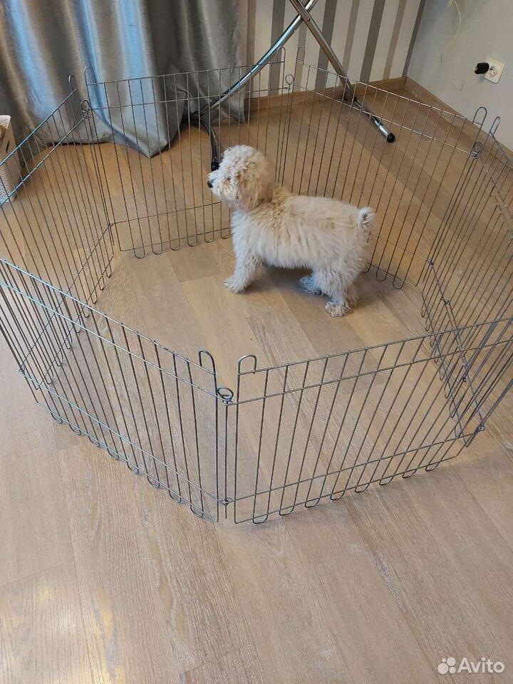 Вольер для собаки металл  89142081065 купить 1