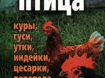 Большой выбор Птиц в Пскове