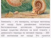 Кулон Аммонит